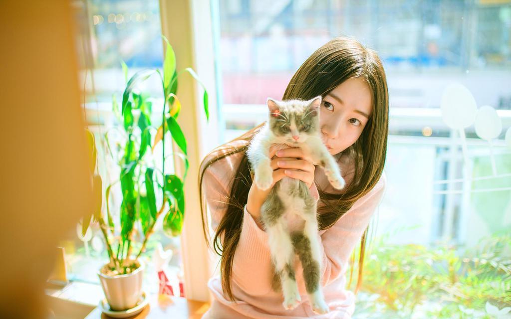 清纯美女遇上猫咖唯美写真图片
